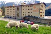 boboty - ovce